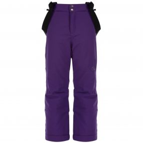 Take On Ski Pant Royal Purple