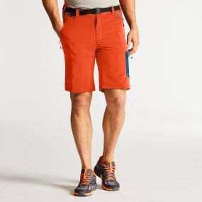 Men's Paradigm Softshell Hiking Shorts Pumpkin Orange