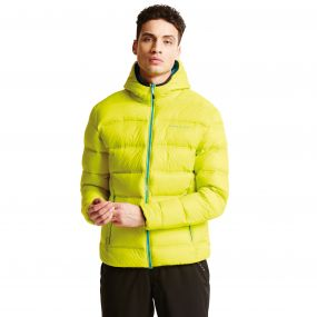 Men's Downtime Down Fill Insulated Jacket Neon Spring