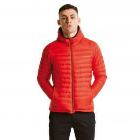 Men's Phasedown Fill Insulated Jacket Seville Red